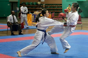 The Karateka