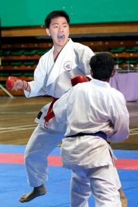 The Karateka 2