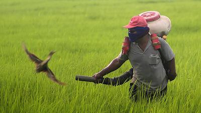 crop_dusting.jpg